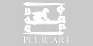Association d'art - Plur'Art
